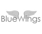 digital-brand-blue-wings
