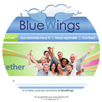 BlueGether corporate social network for the BlueWings engineering company